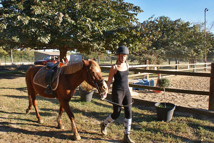 Camping l'Arlesienne - équitation